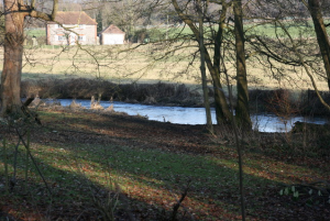 landscape of 'The River Darent from the Darent Valley Path, Lullingstone Country Park'